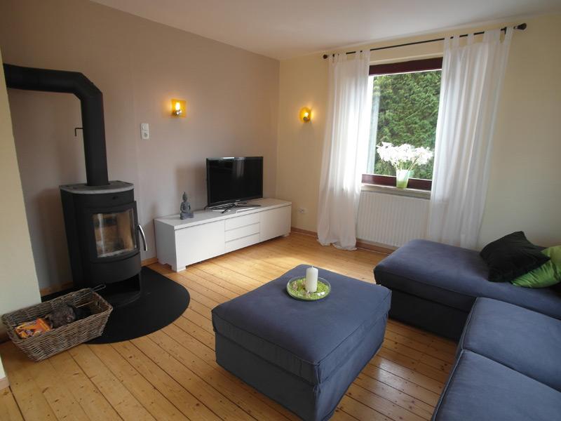 Wohnzimmer mit einem kleinen Ofen vor der Couch zur linken des Fernsehers