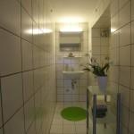 Sehr schmales, weißes Badezimmer mit einem kleinen Glasschrank und grünen Akzenten