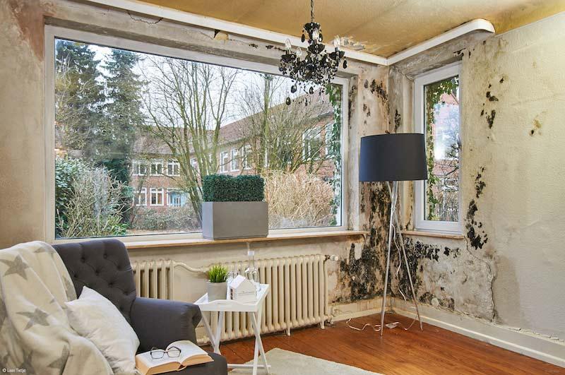 Wohnzimmer mit stark schimmelnder Wand